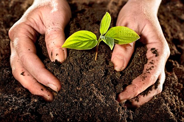 Comienza en Cuba Foro Mundial de Agroecología