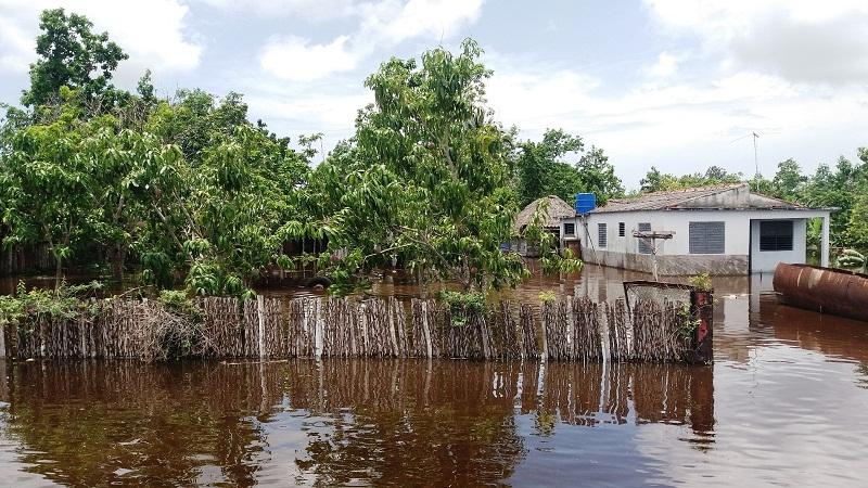 Ciénaga de Zapata: tercio de la población continúa evacuada (+Audio)