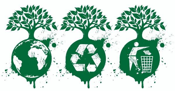 Vinculan educación ambiental a Tarea Vida en Holguín