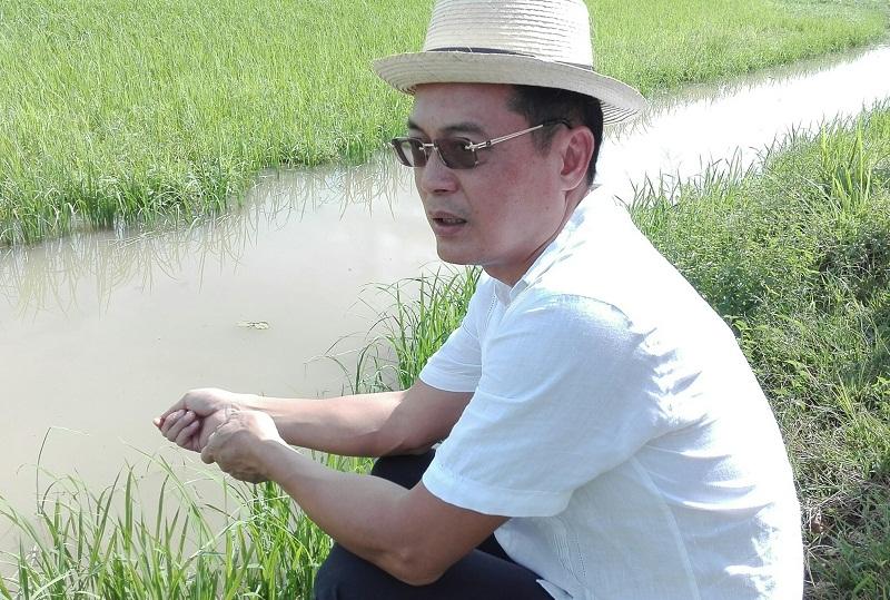 Continuará cooperación entre Viet Nam y Cuba para producción de arroz