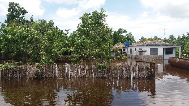 Peligrosa inundación en la Ciénaga de Zapata (+Audio y Fotos)