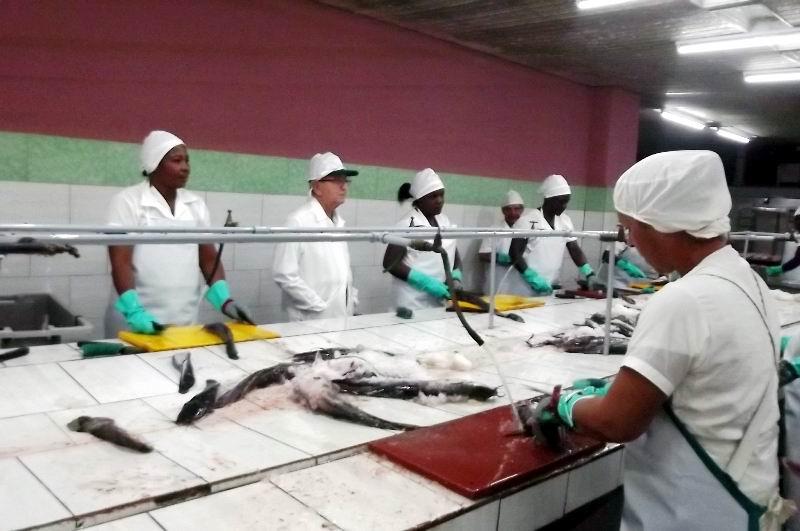 En el establecimiento Estrella Roja de procesamiento industrial de la pesca acuícola en la ciudad de Camagüey.