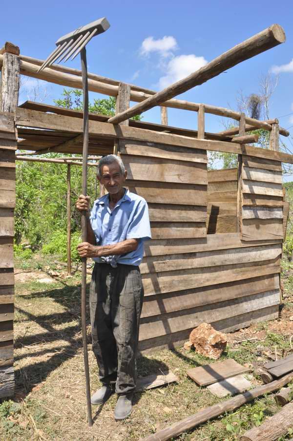 Para producir tres toneladas de carbón vegetal y estar entre los carboneros destacados de Cuba Antonio Cumaná Cuéllar desafía la humedad, el mosquito y cuanta adversidad le imponen los montes de Nueva Paz. Foto Elvis Gil