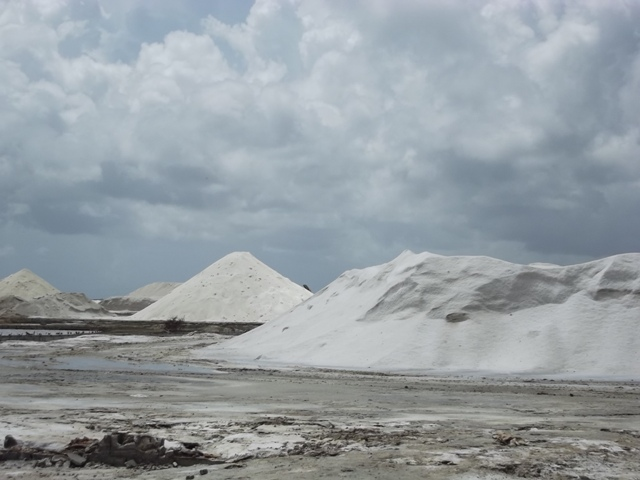 Hay suficiente materia prima, 40 mil toneladas de sal en meseta, para reiniciar la producción