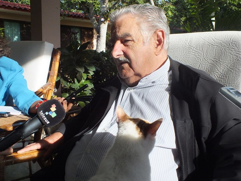 Pepe Mujica en entrevista a periodistas de varias agencias. Foto: Salomé Campanioni