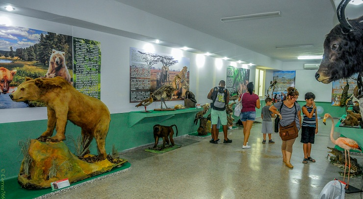 The Oldest Zoo of Cuba