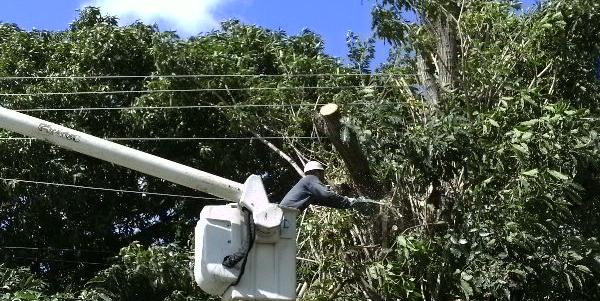 Unión Eléctrica se prepara la ante posibles daños del huracán Irma en Cuba