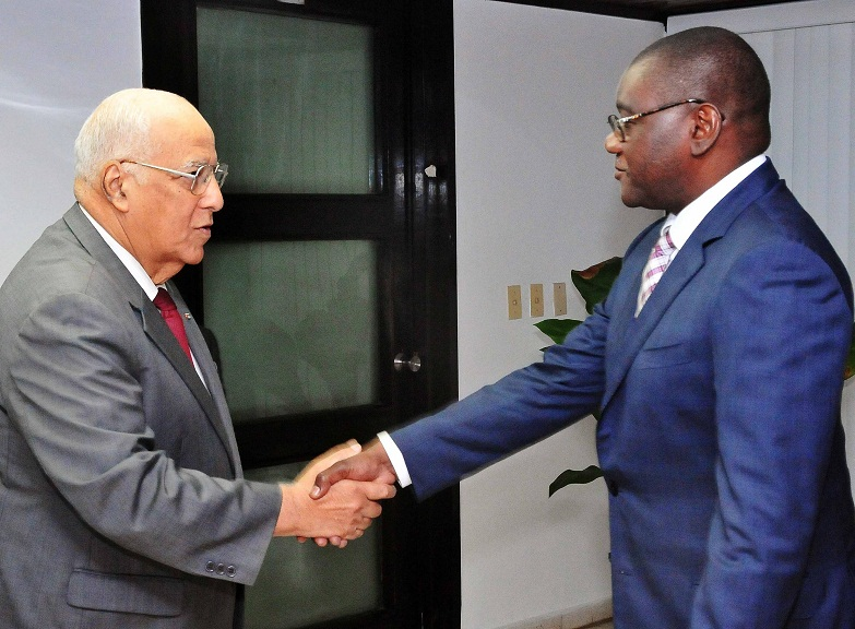Cuban Vice President Receives Angolan Government Official