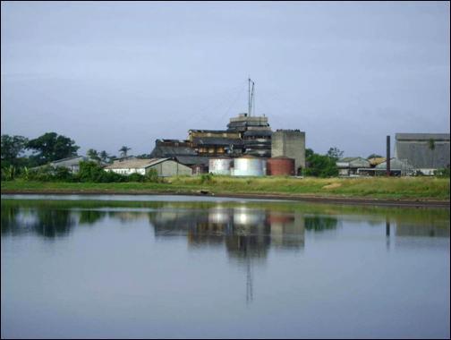 Además de beneficiar los suelos, el empleo disminuye los residuales derivadas del proceso fabril.