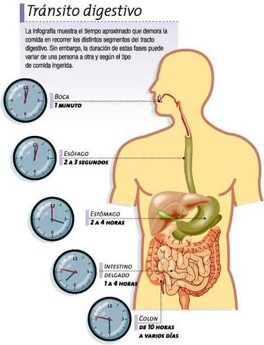 Para la constipación digestiva o estreñimiento