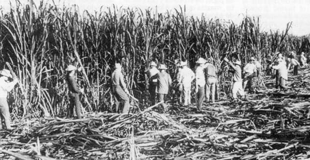 1962: Se alista Cuba para la celebración del 26 de Julio