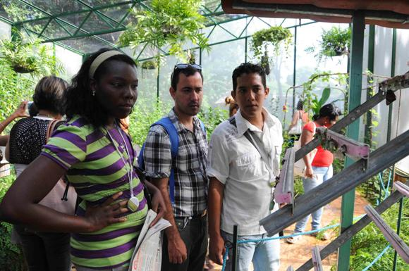 Mariposario cubano en la Quinta de los Molinos. Foto: Roberto Morejón Rodríguez