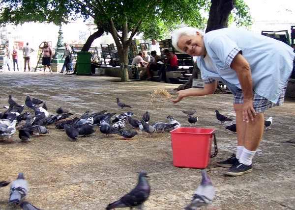 Anciana alimentando a las palomas. Foto Abel Rojas