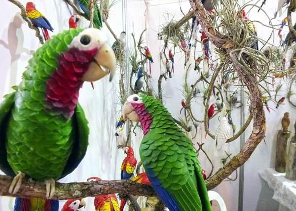 Aves endémicas, es la propuesta que en esta ocasión presenta Familia Barrios en la feria Arte para Mamá. Foto: Abel Rojas.