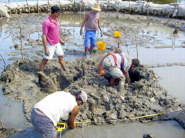 En Cuba hay unos 3 mil 200 sitios arqueológicos aborígenes