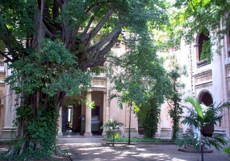 Patio de los Laureles, de la Facultad de Matemática y Computación, uno de los lugares más importantes del Centro de altos estudios.