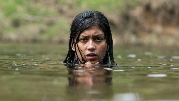 Entregan premios colaterales del 39 Festival del Nuevo Cine Latinoamericano (+Fotos)
