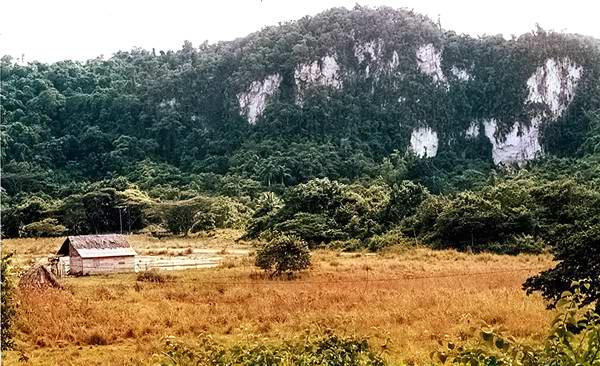 Montes blancos, en Moa, Holgu�n