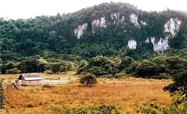 Montes blancos, en Moa, Holguín