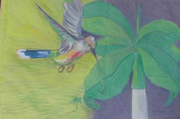 Empleo el colibrí porque me resulta muy atractivo desde el punto de vista plástico, señaló Machuty.