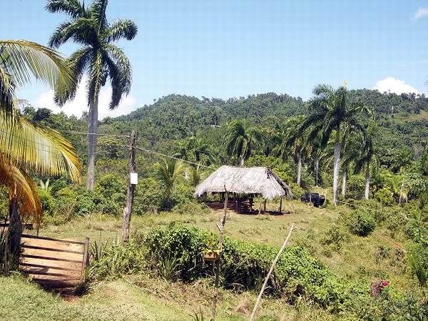 Actualmente es uno de los territorios donde se afianza el noble programa del Plan Turquino Foto: Aroldo García