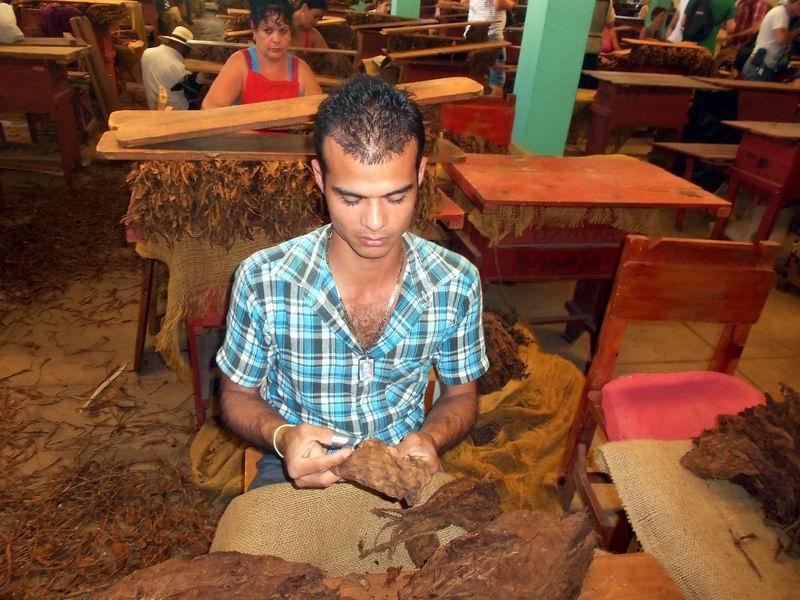 Cuban cigars are 100% natural: officials