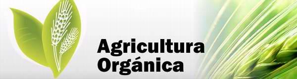 Cuba por sustituir importaciones de semillas