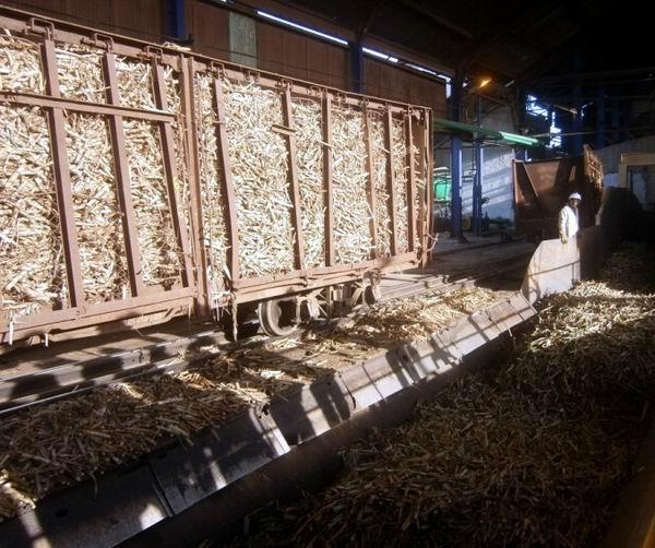 Arrancó la zafra azucarera en Cienfuegos, por central 14 de Julio