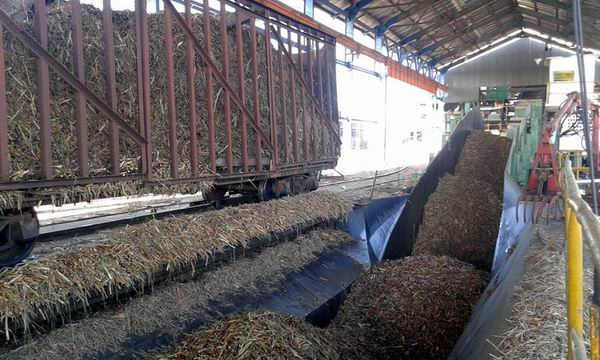 Inició la zafra azucarera 2017-2018 en Cienfuegos