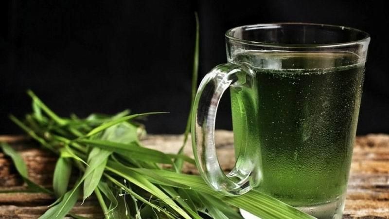 �Por qu� necesitamos beber agua con clorofila?