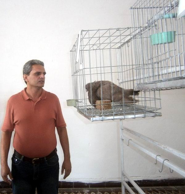 En Cienfuegos funciona Cooperativa ornitológica no agropecuaria. Foto: Mireya Ojeda