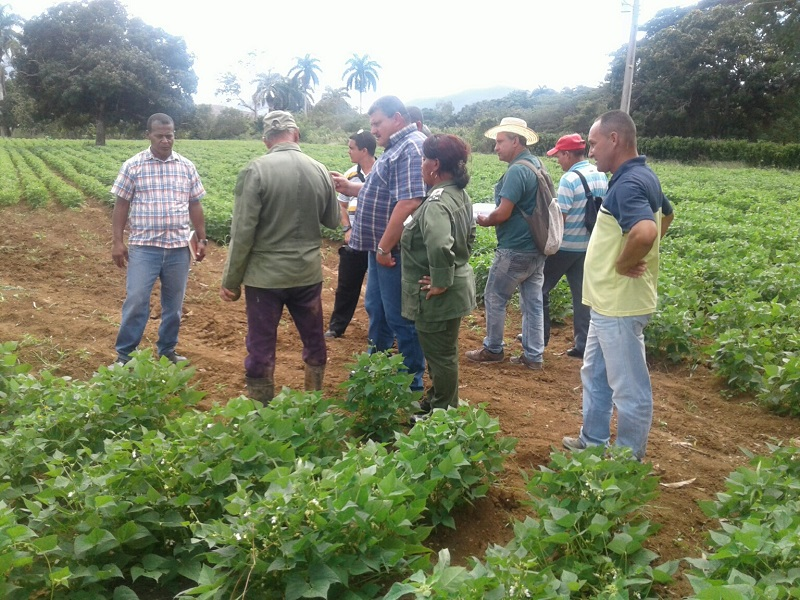 Exhortan a campesinos guantanameros a incrementar sus producciones