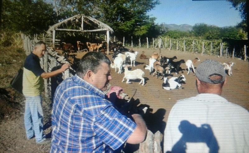 http://www.radiorebelde.cu/images/images/economia/economia2/visita-presidente-anap-guantanamo2.jpg