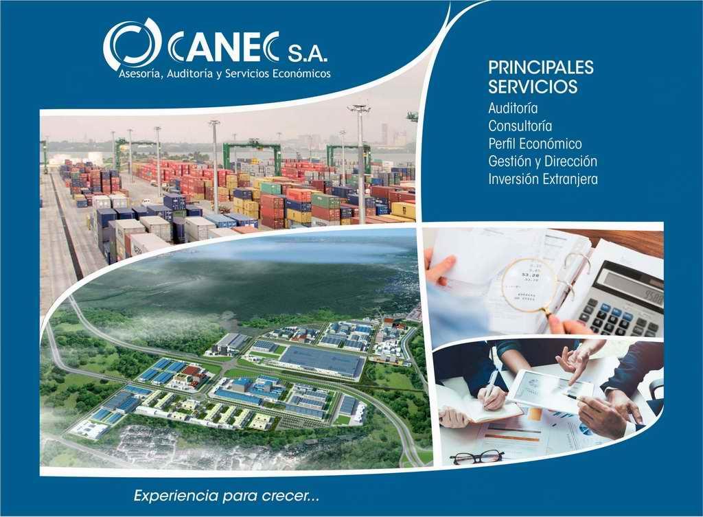 Consultora CANEC