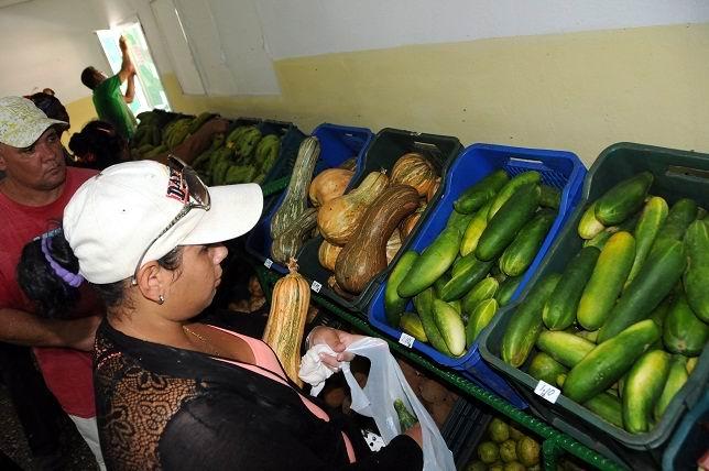 Estable variedad y calidad de productos en mercados agropecuarios estatales