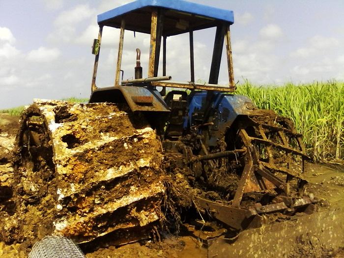 Acondicionan suelos campesinos de Nueva Paz (+Audio)