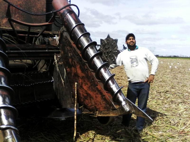 Half of Cuba sugar mills to start harvest in December