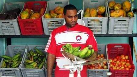Se reconfiguran mercados agropecuarios cubanos