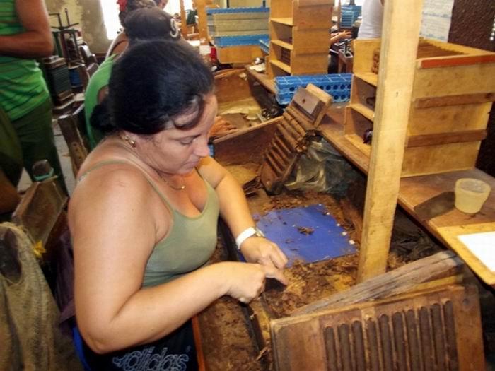 La calidad  de la hoja y la eficiencia en el proceso de fabricación son características que marcan el tabaco que sale de esta región espirituana. Foto: Miozotis Fabelo