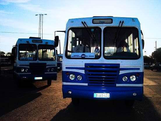 Diecinueve nuevos ómnibus, asignados por el estado cubano a los pobladores de Holguín. Foto Aroldo García