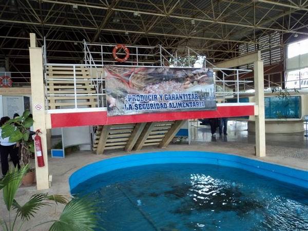 Reabiertos al público otros tres pabellones en Expocuba. Foto: Cabrera Peinado