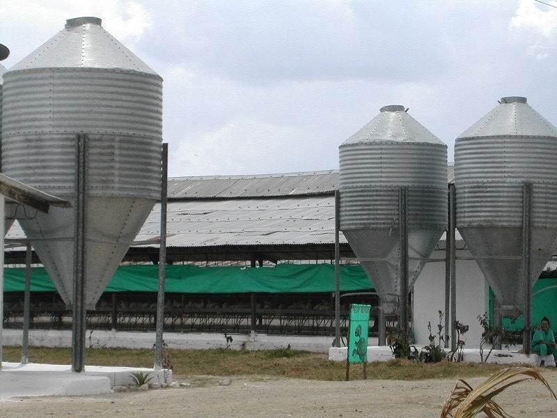 Recuperación de techos en naves avícolas.