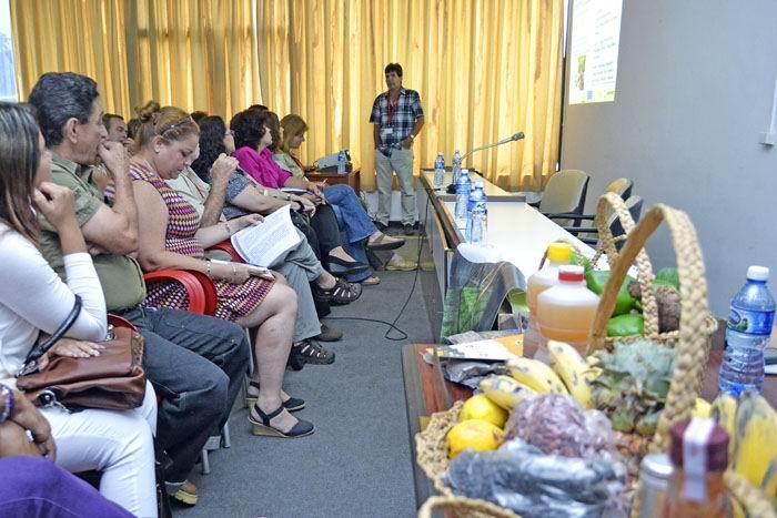 Agricultura urbana en Cuba: viaje de la semilla a la hortaliza