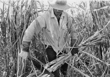 1961, un año de renovación para la clase obrera cubana