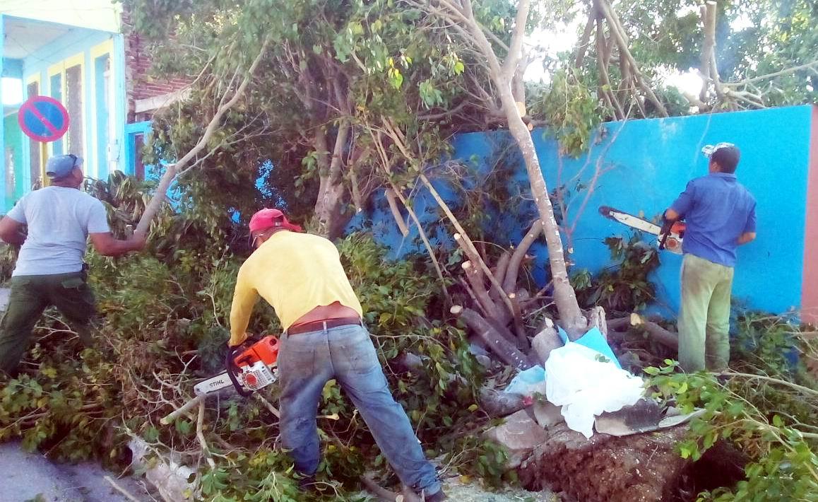 Inmersos trabajadores de la forestal de Ciego de Ávila en la recuperación