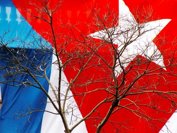 La Bandera Cubana se puede usar en las sedes de órganos, organismos, y otras instituciones del Estado y de organizaciones políticas, sociales y de masas. Foto Abel Rojas Barallobre