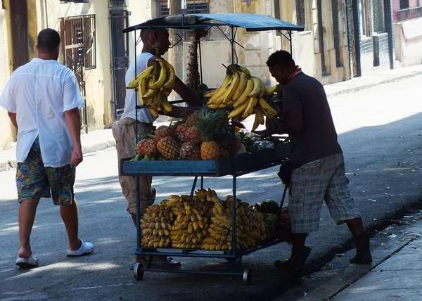 Por las calles cubanas transitan más de 23 mil 680 carretilleros y vendedores de productos agrícolas en forma ambulatoria. Foto Abel Rojas Barallobre