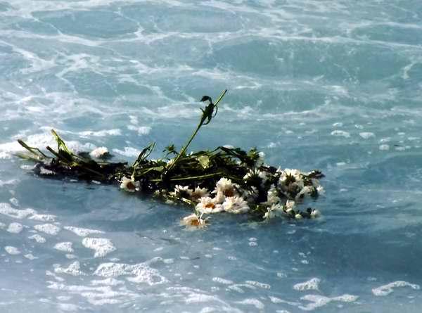 Flores para Camilo Cienfuegos. Foto Abel Rojas