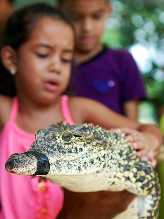 El zoológico constituye un lugar ideal para conocer y ampliar los conocimientos sobre la fauna nativa y de otras latitudes. Foto: Abel Rojas Barallobre