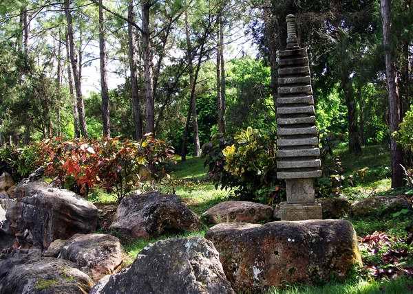 En fotos jard n bot nico nacional de cuba for Resto jardin japones